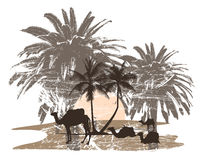 camels and palm tree. Very detailed vector illustration of african desert with camels and palm tree - each element can be edited separately Royalty Free Stock Image