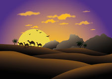 Camels in sunset desert. Silhouetted camels walking in Arabian desert with colorful sunset and cloudscape Royalty Free Stock Photo