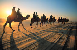 Camels. Tourists ride camels on Cable beach sy Broome Western Australia at sunset stock photo