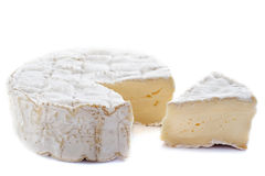 Camember cheese Royalty Free Stock Photos