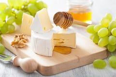 Camembert τυρί με τα σταφύλια, το μέλι και τα καρύδια Στοκ φωτογραφία με δικαίωμα ελεύθερης χρήσης