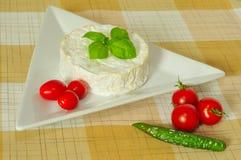 Camembert Lizenzfreies Stockfoto