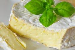 Camembert Stockbilder