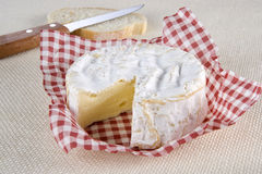 Camembert. Cheese Camembert type cut and slice of bread Stock Images