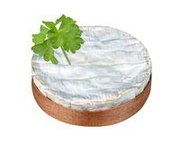 Camembert Stockbild