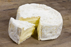camembert Fotografia de Stock Royalty Free