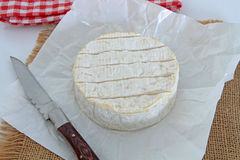 camembert obrazy royalty free