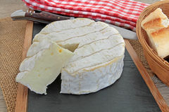 camembert stock foto