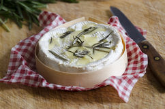 Camembert Royalty Free Stock Photo