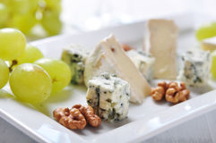 Camembert and  blue cheese Stock Photos