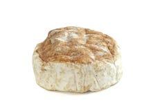 Camembert calvados Royalty Free Stock Image