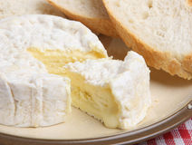 Camembert Cheese with Bread Stock Photography