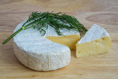 Camembert cheese with dill Royalty Free Stock Photography