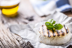 Camembert cheese. Grilled camembert cheese with olive oil and basil leaves Royalty Free Stock Photography
