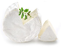 Camembert cheese. Stock Photo