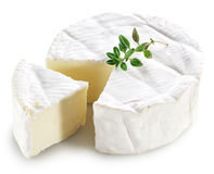 Camembert cheese. Royalty Free Stock Photography