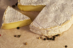 Camembert cheese and pepper on the paper Royalty Free Stock Photos