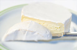 Camembert cheese on plate. Cut with knife Stock Image