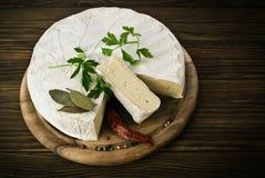 Camembert cheese slice macro shot. Stock Photography