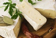 Camembert cheese slice macro shot. Royalty Free Stock Image