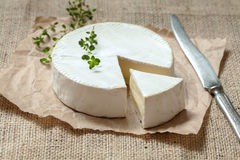 Camembert cheese, sliced round creamy traditional Stock Image