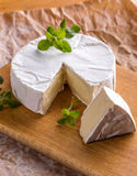 Camembert cheese. Sliced round camembert cheese on rustic style background Stock Photography
