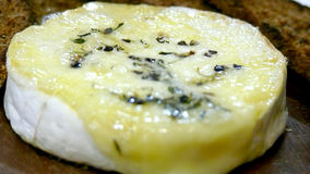 Camembert cheese with thyme Royalty Free Stock Photo
