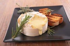 Camembert cocido al horno foto de archivo libre de regalías