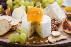 Camembert con el primer de la miel y de la fruta en una bandeja de madera Fotos de archivo libres de regalías