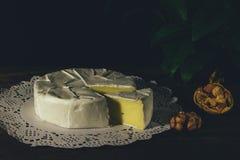 Camembert con la muffa bianca nobile Formaggio squisito Fotografie Stock Libere da Diritti