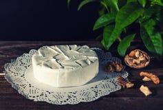 Camembert con la muffa bianca nobile Formaggio squisito Fotografia Stock Libera da Diritti