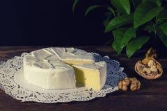 Camembert con la muffa bianca nobile Formaggio squisito Fotografie Stock