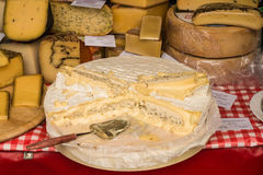 Camembert de Normandie and other kinds of cheese for sale on far Royalty Free Stock Photo