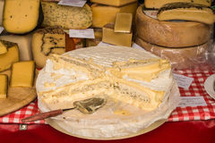 Camembert de Normandie and other kinds of cheese for sale on far Royalty Free Stock Images