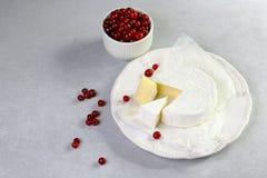Camembert del formaggio con i mirtilli rossi su fondo leggero, vista laterale superiore, fine su fotografie stock libere da diritti