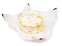 Camembert fransk ost Arkivfoton