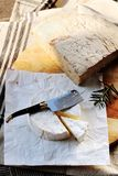 Camembert french cheese Normandy France royalty free stock photos