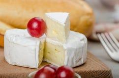 Camembert fresco dalle aziende agricole organiche fotografia stock