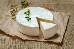 Camembert gourmet round cheese traditional French Royalty Free Stock Images
