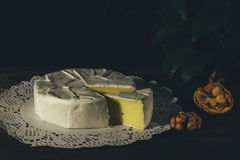 Camembert with noble white mold. Exquisite cheese. Camembert cheese on a rustic background.French cheese with a white mold. Brie cheese with white noble mould Royalty Free Stock Photos