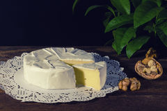 Camembert with noble white mold. Exquisite cheese. Camembert cheese on a rustic background.French cheese with a white mold. Brie cheese with white noble mould Stock Photos
