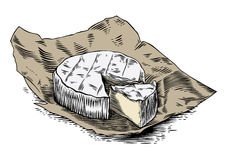 Camembert on the paper Stock Images