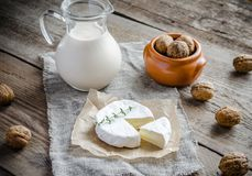 Camembert with pitcher of milk and whole nuts Royalty Free Stock Photography