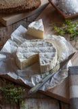 Camembert ser Obrazy Royalty Free