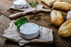 Camembert, soft cheese with homemade pastries Royalty Free Stock Images