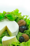 Camembert u. Muttern Lizenzfreies Stockfoto