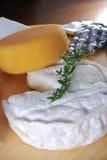 Camembert und Kanal salut Käse Lizenzfreies Stockbild