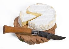Camembert on the wooden board Royalty Free Stock Photography