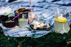 Camembertkäse mit Feigen, Frucht, Granola, Kekse, Jogurt, Brot, Limonade stockfoto