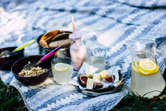 Camembertkäse mit Feigen, Frucht, Granola, Kekse, Jogurt, Brot, Limonade lizenzfreies stockfoto